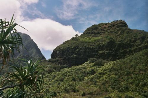 kauai-140_1.jpg