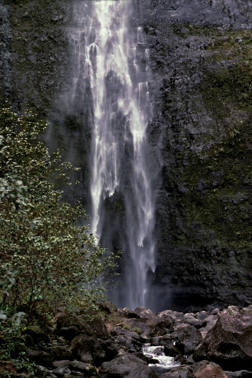 kauai-146_1.jpg