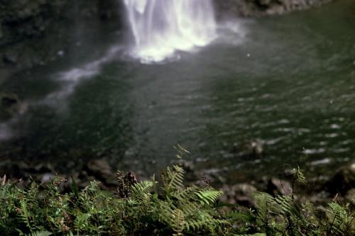 kauai-148_1.jpg
