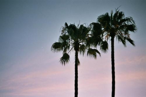 Summertime 014_1