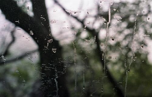 Rain Screen_1
