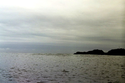 Swells_1