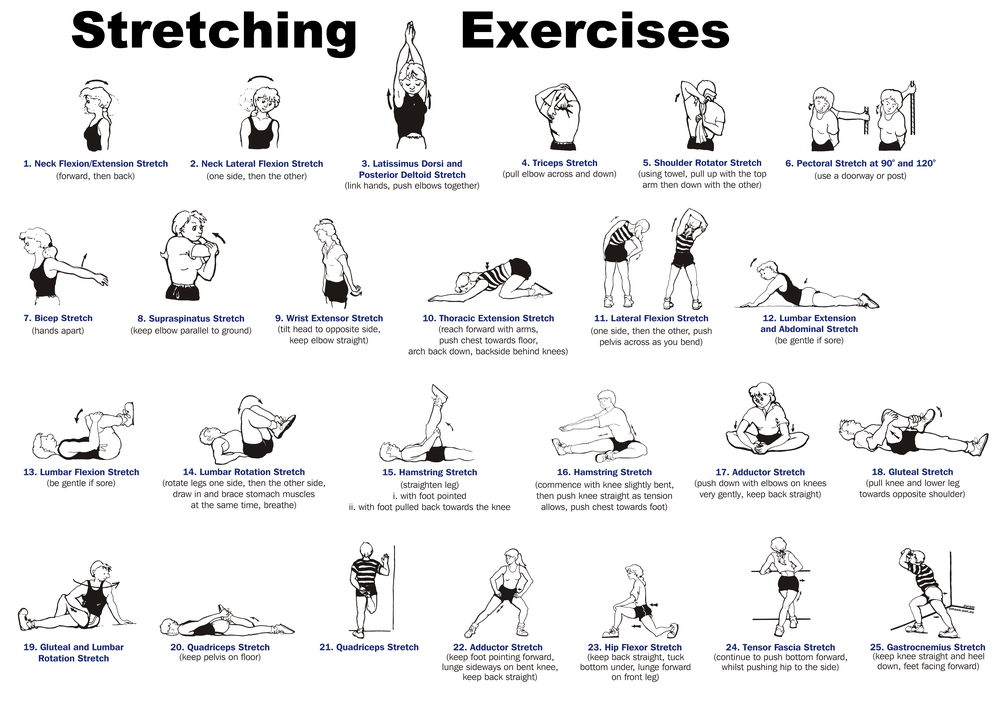 cred: http://www.sportsscience.co/flexibility/whole-body-stretching-routine/