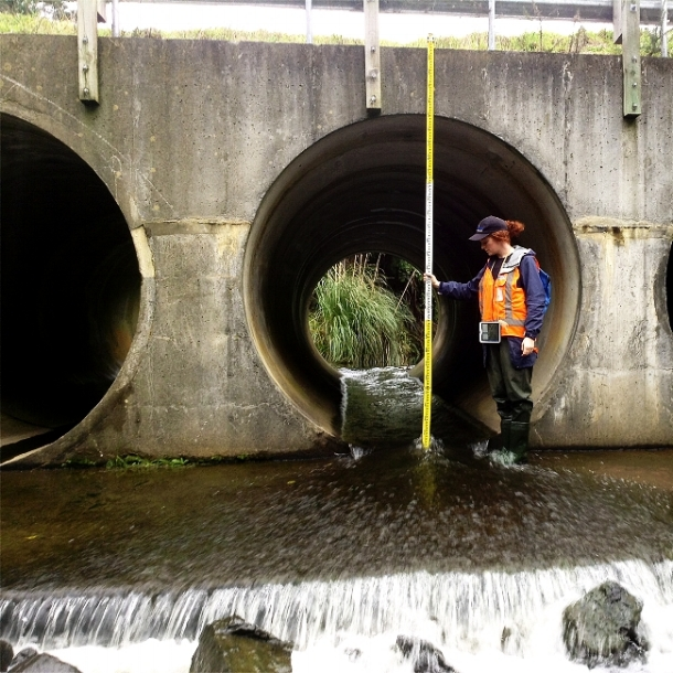 Real-time rainfall data collection informs highway project | Morphum Environmental