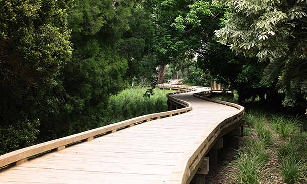 "<div align=""left""><h3>Arthur Mead Award for the Environmental and Sustainability, Small Projects: Morphum Environmental, for the Roy Clements Treeway Boardwalk</h3></div>"