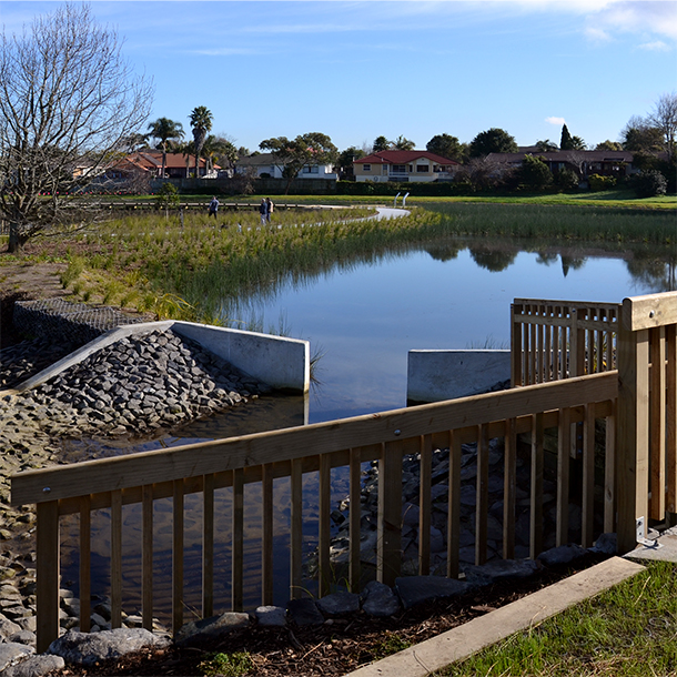 Brylee Drive Reserve Wetland in Takanini. Construction of the wetland was completed in June 2017.