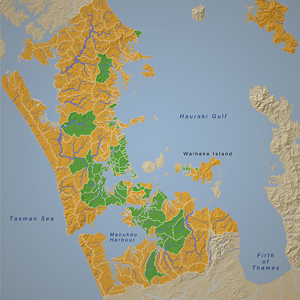 This map shows the catchment-by-catchment progress of stream surveys carried out in the Auckland region by Morphum Environmental and other consultants. The green areas show surveyed catchments.
