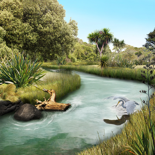 Concept design visualisation for the proposed stream restoration at Okahu Bay.
