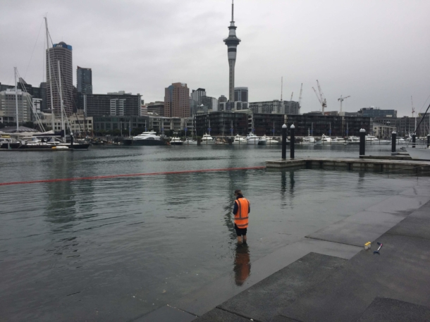 Morphum Environmental has undertaken sampling at numerous beaches across Auckland to validate Auckland Council's new Safeswim coastal hydrodynamic forecasting model.