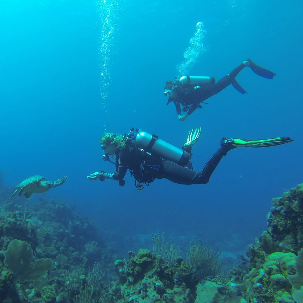 Hone your diving skills and go pro!