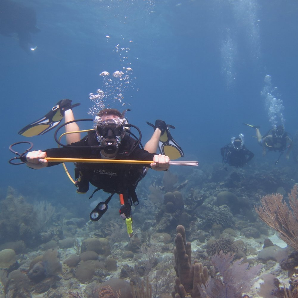 Students of the Advanced Open Water certification course explore their abilities underwater, and pick up new hobbies!