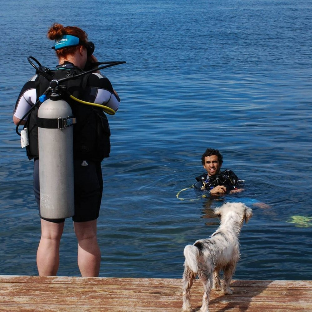 An Open Water Diver certification course student prepares for a deep water entry, while Scratchy the dog supervises from the deck.