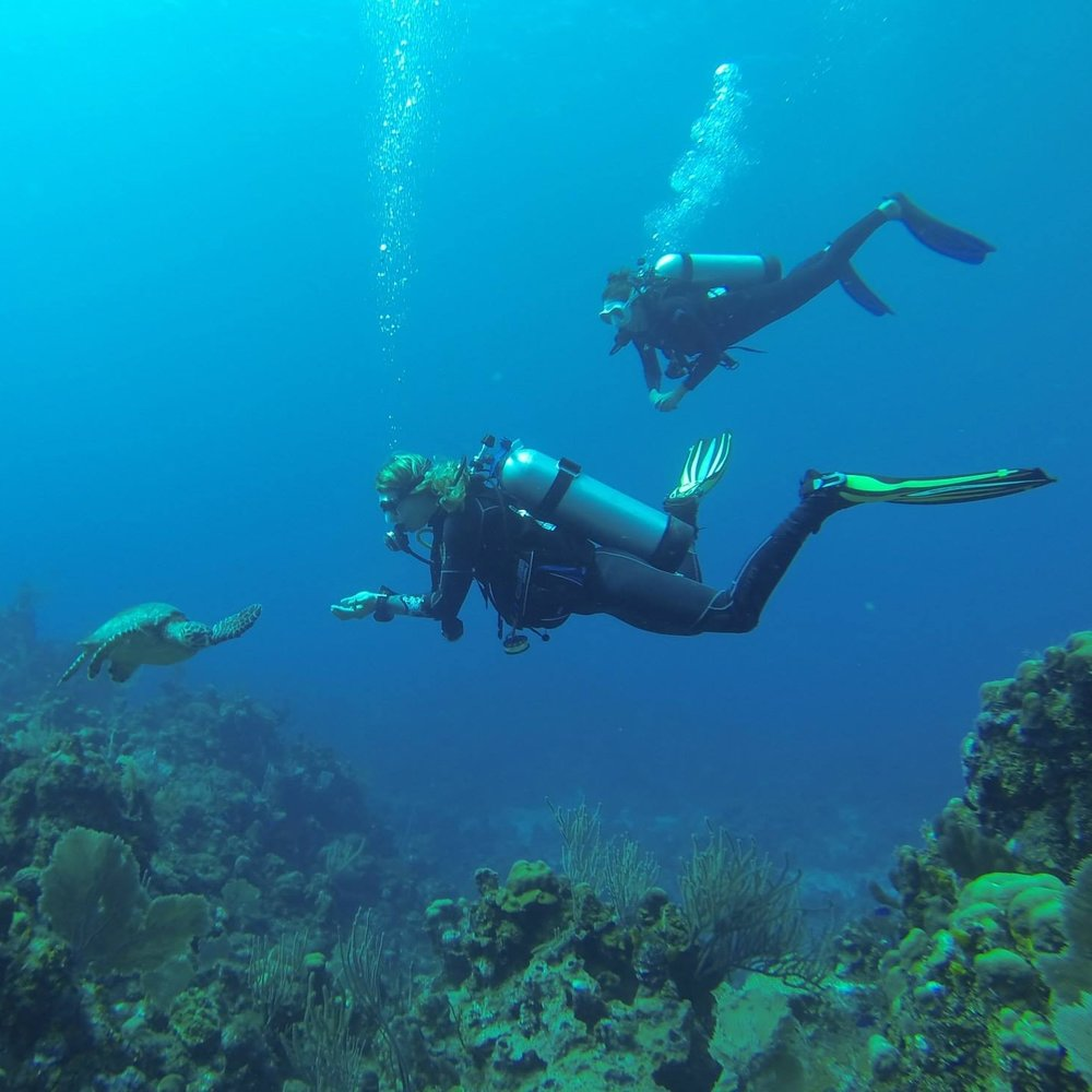 A divemaster is not only a certified guide, but an ambassador to the underwater world. Become a professional with the Divemaster Certification course.
