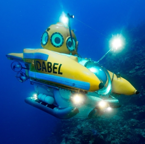 The Idabel accommodates two passengers and the pilot, down to depths of 2,500 feet in the profound depths around Roatan.