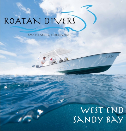 inside under dive travel deep roatan divers