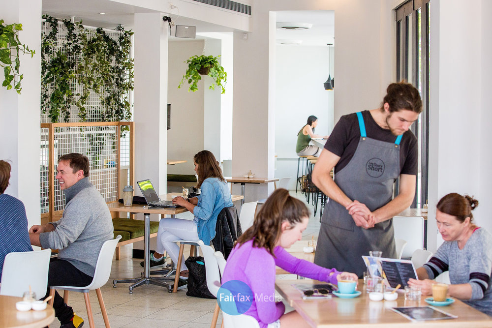 modern cafe with diners eating, ordering food and using laptop while drinking coffee