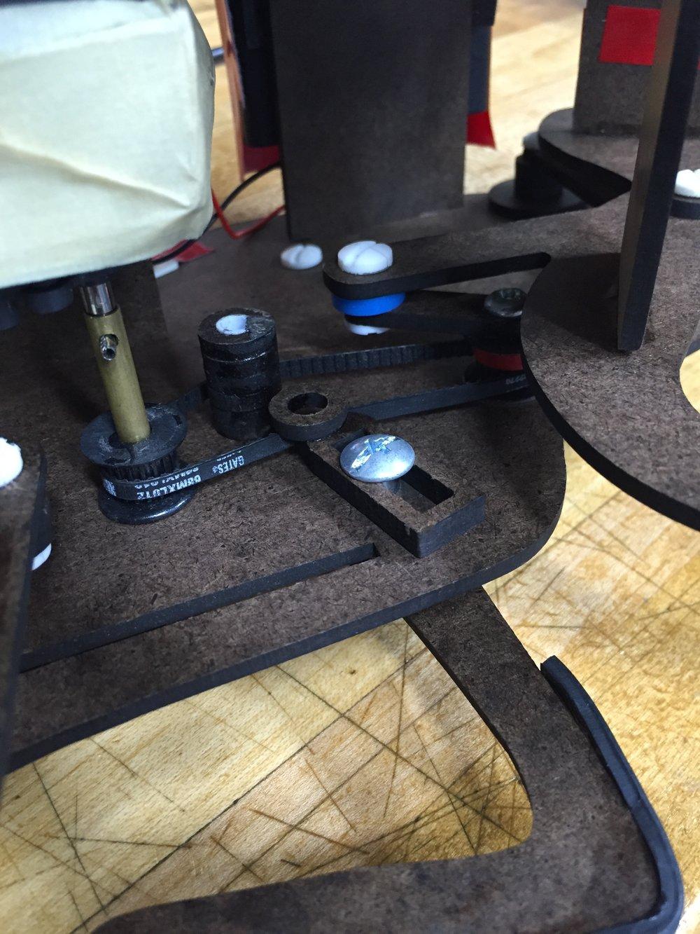 Hind leg belt drive system.