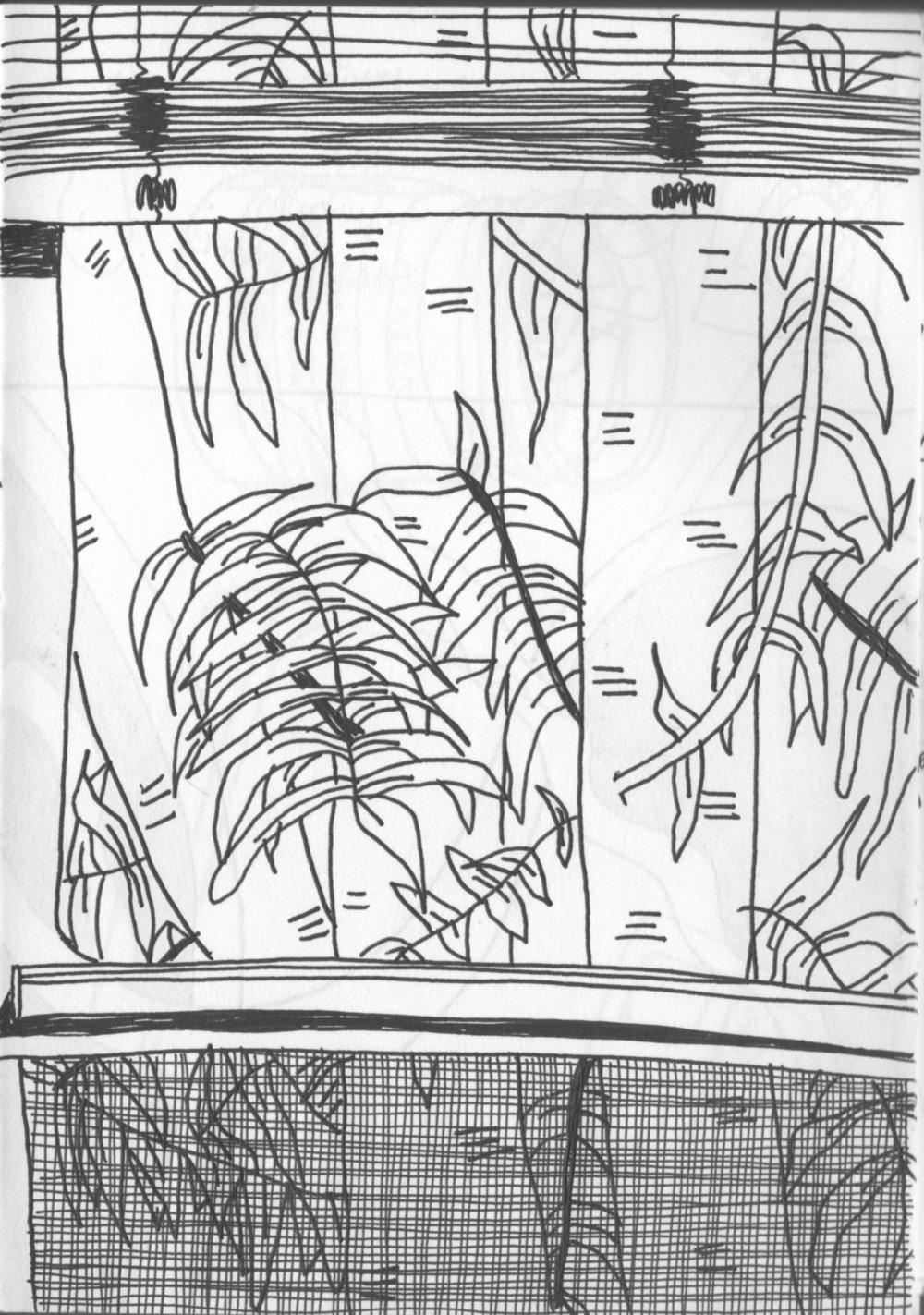 Scan 5.jpeg
