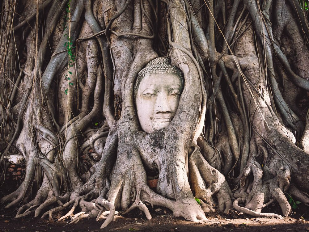 Wat Mahathat, Ayutthaya, Thailand