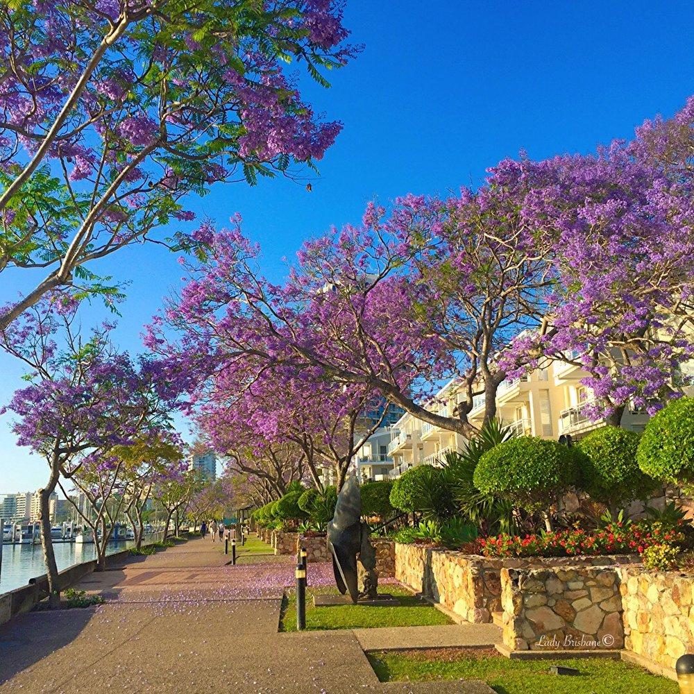 Dockside Walk, Kangaroo Point.