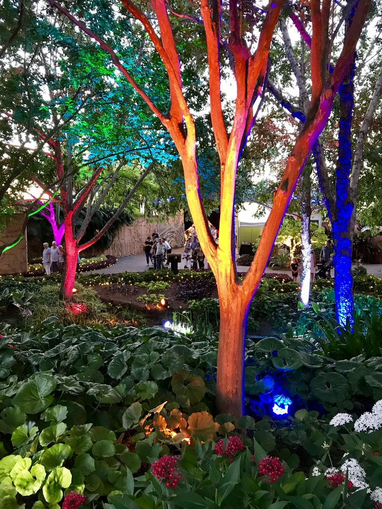 fullsizerenderjpg - Enchanted Garden