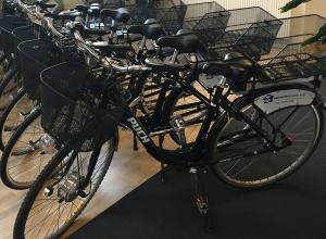 El-cykler-d.25.02.15-300x220.jpg