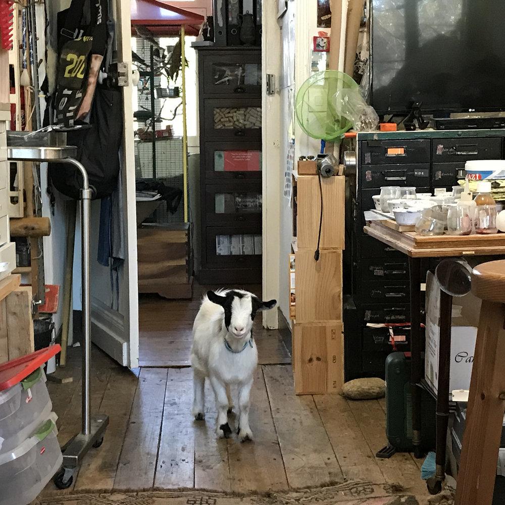 Courbet entering studio s1.jpg