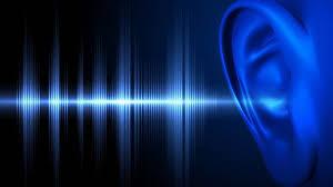 PfP Audio Ear picture