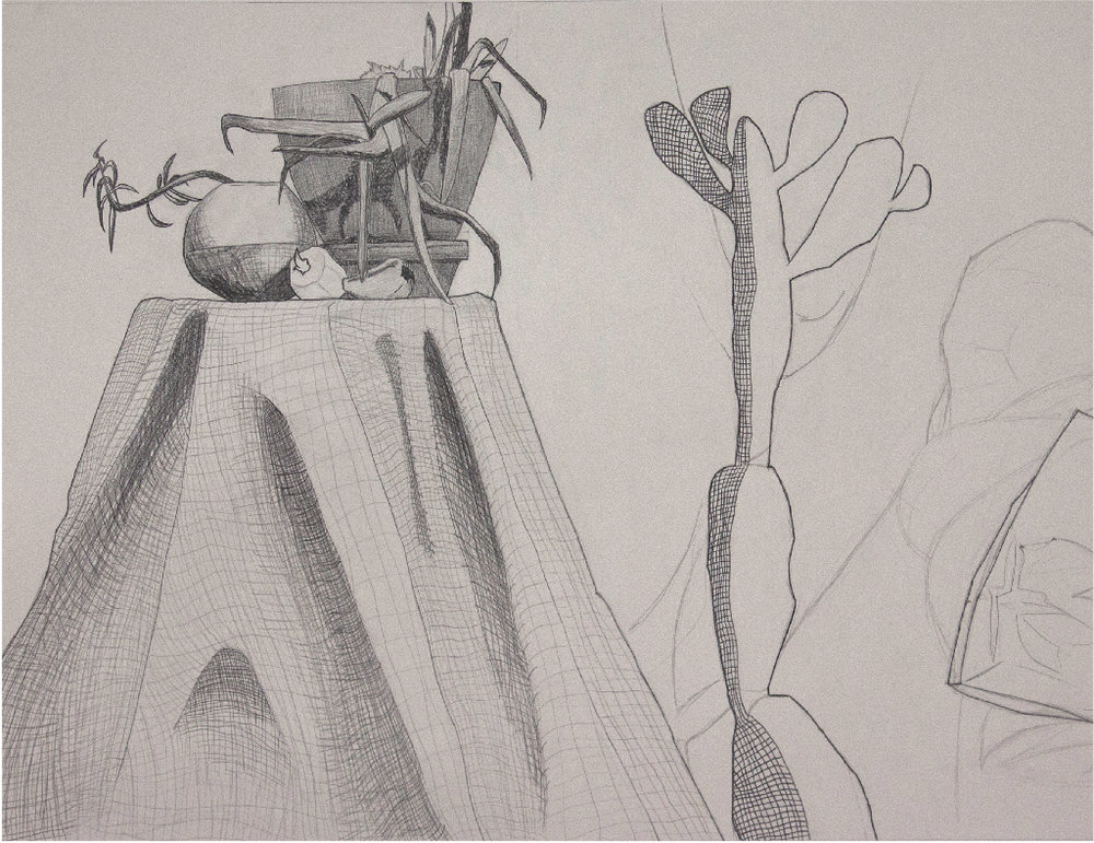 Mats Klein, Introduction to Drawing, Graphite, DePauw University, 2016