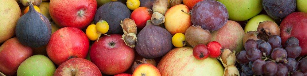 malvern-autumn-show-apples.jpg