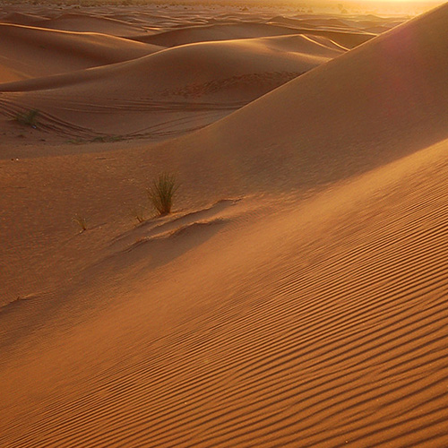 SAND SQUARE.jpg