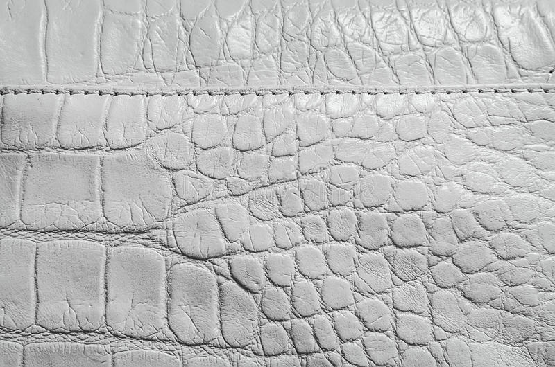 white-pearl-texture-reptile-skin-seams-edges-useful-as-background-60004536.jpg