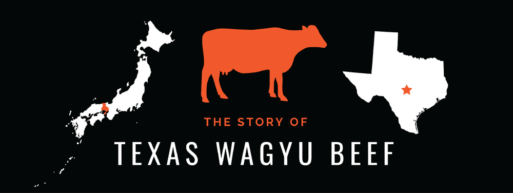 Texas Wagyu Beef Infographic.png