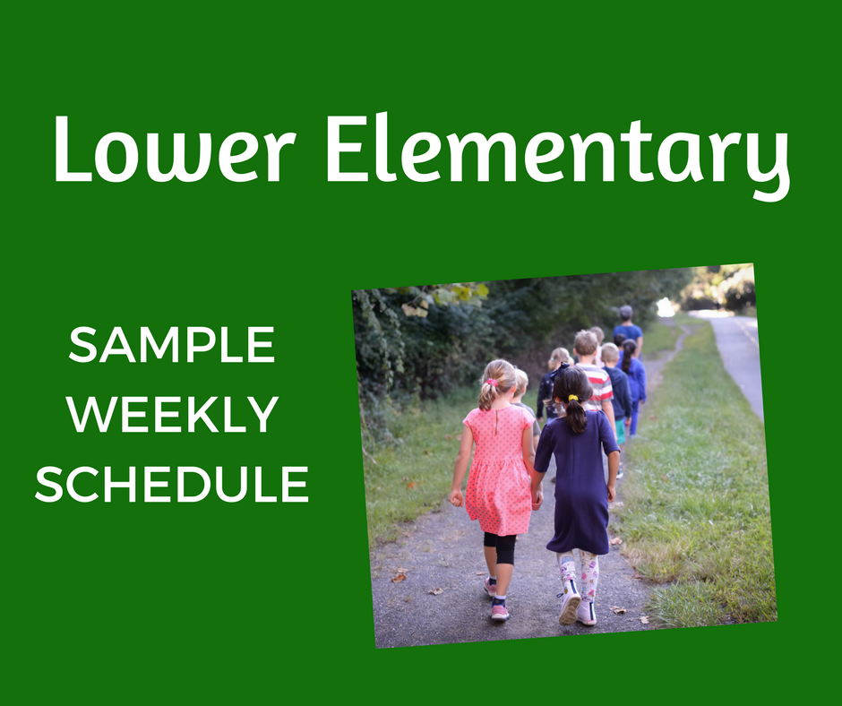 LE Sample Weekly Schedule.png