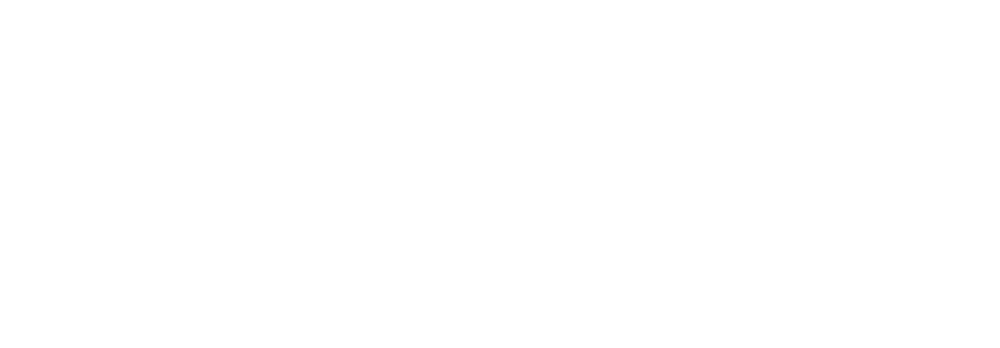 New Anchor Point Logo white.png