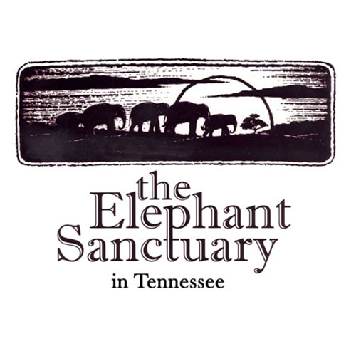 The-Elephant-Sanctuary.jpg