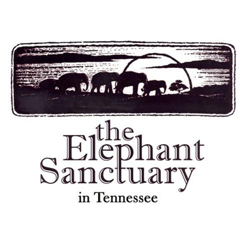 The-Elephant-Sanctuary.jpg