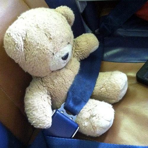 My-Teddy-Bear-Fuzzy.jpg
