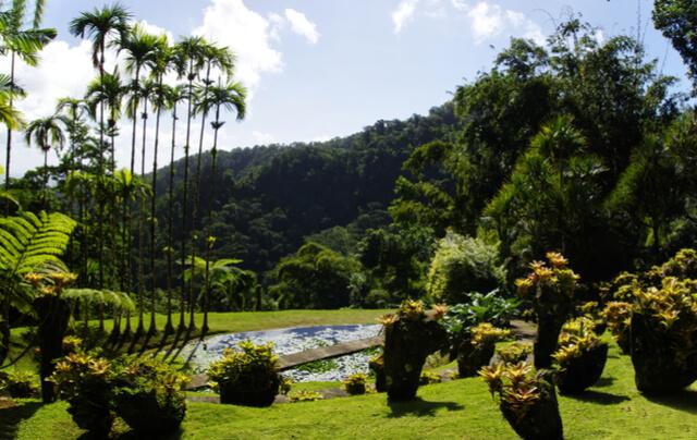 Balata Gardens (1).jpg