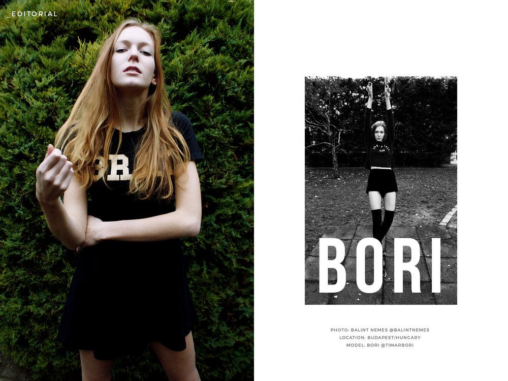 bori-title.jpg