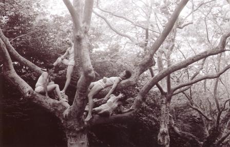 tree[1].jpg