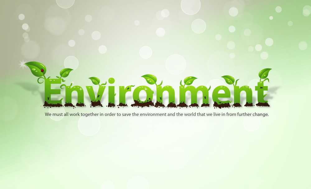environment_wallpaper_by_hollowichigobanki-d33jale.jpg