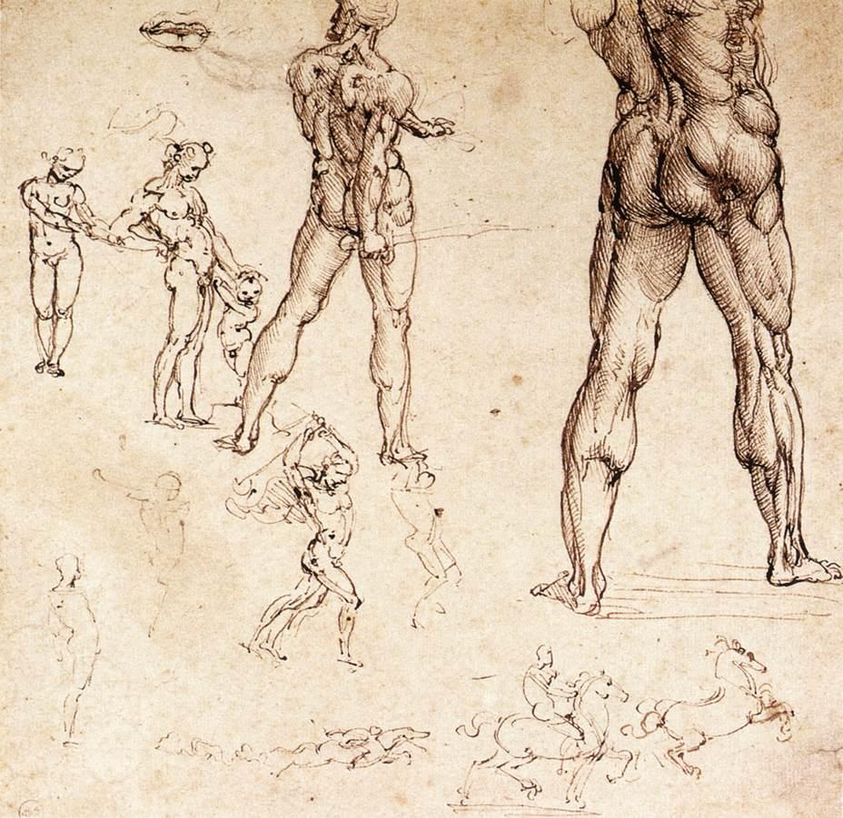 anatomical-studies-leonardo-da-vinci.jpg