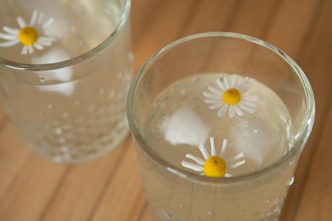 Chamomile Water Kefir
