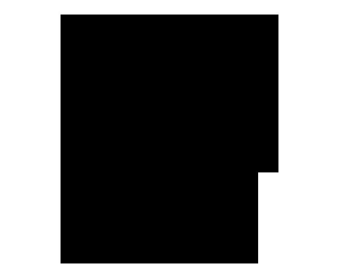 noun_232464_cc.png