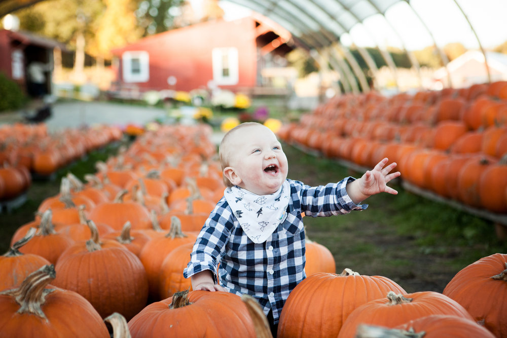 pumpkin_patch_0007.jpg