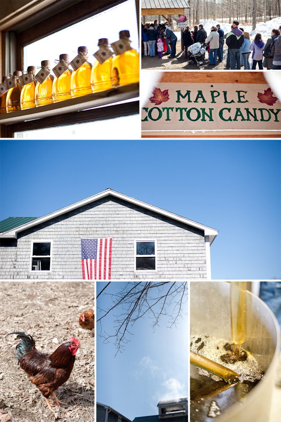 maine-maple-sunday