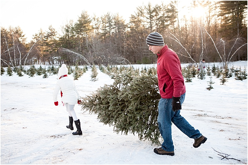 christmas_tree_farm_portrait_maine_0001.jpg
