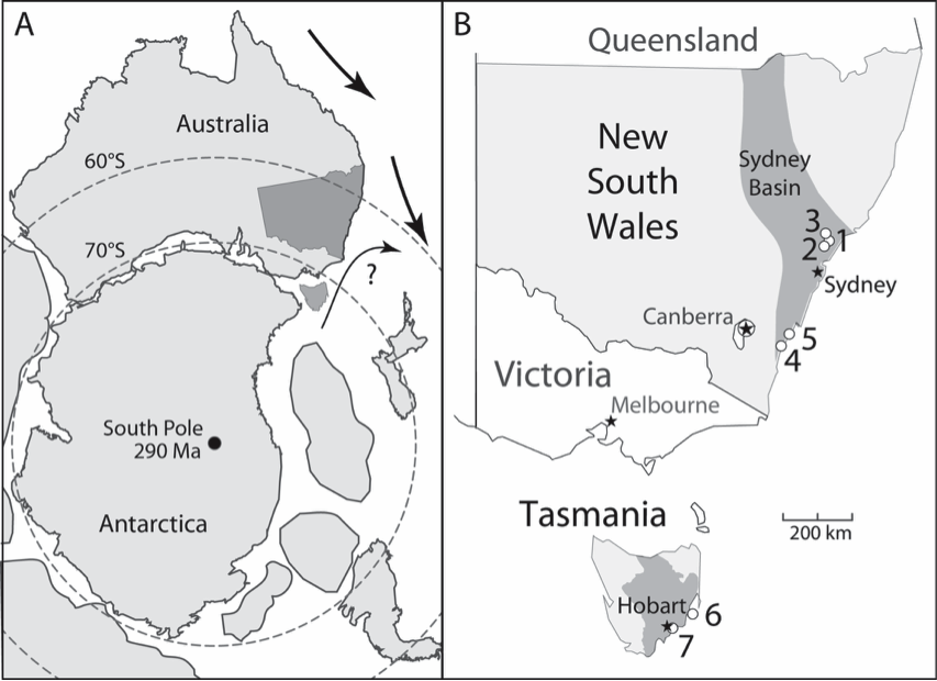 Figure 8. Map showing the locations of samples of  Eurydesma  from Beard et al. (2015). A) Paleogeographic map, New South Wales and Tasmania in dark grey, arrows indicated hypothesized surface water currents. B) Numbered circles show location of specific sample sites and the grey band shows the extent of the Sydney Basin (early Permian). Figure is from Beard et al. (2015)