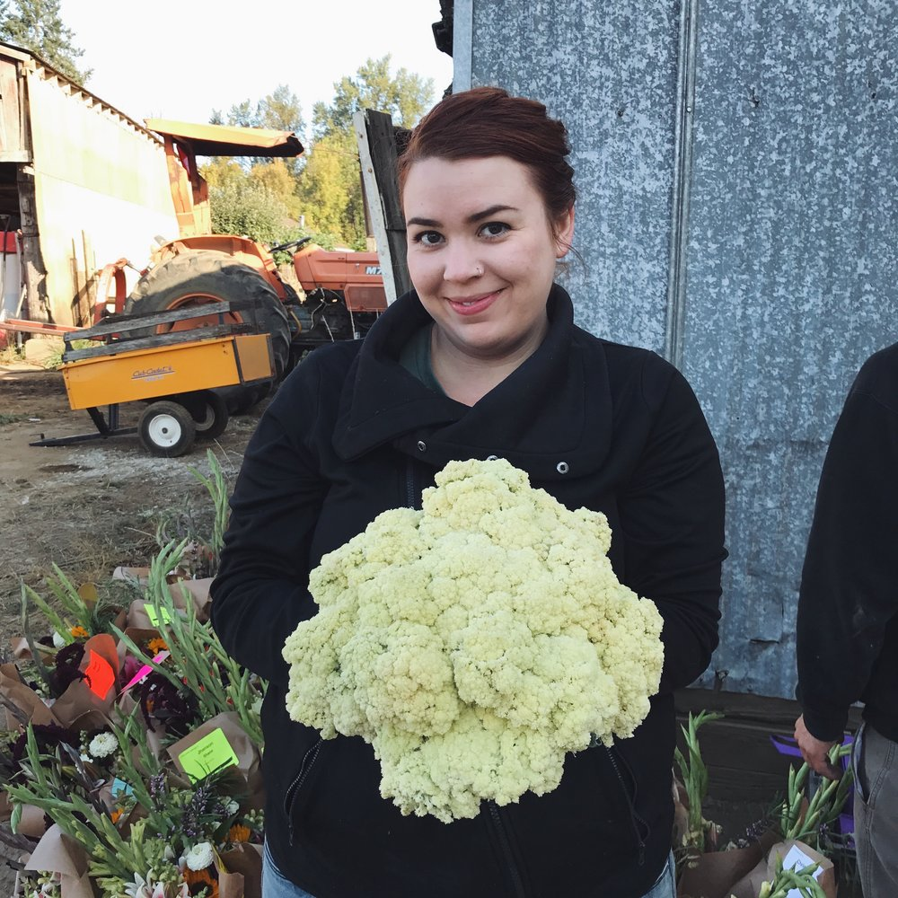 helsing junction farms csa farmworker cauliflower